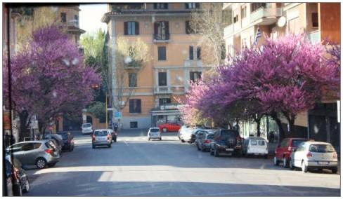 погода в Риме по месяцам